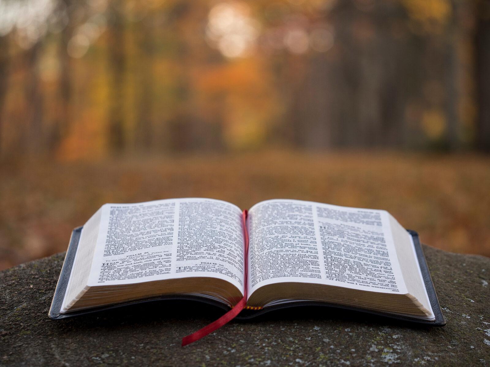 bible fall