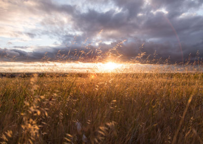Attentiveness: Jesus is Still on the Throne